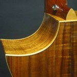 Sharp cutaway with curly maple binding