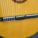 All 21 strings are anchored to the ebony bridge.