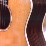 Rounded Cutaway