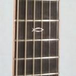 Custom Fingerboard Markers